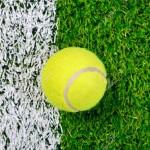 Tenis – 13 – 19 iunie 2016